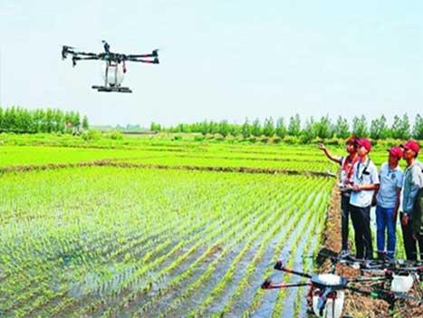 农业植保解决方案